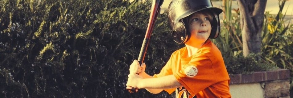 Homeschool Baseball Fan